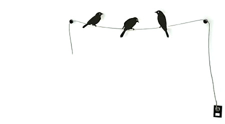 Birds on a Wire - http://eosmexico.com/