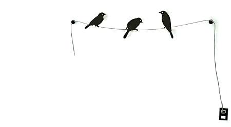 Birds on a Wire - http://eosmexico.com/